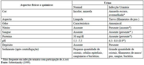 Exame infeccao urinaria