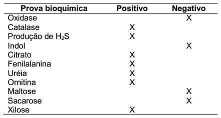 Proteus mirabilis como contaminante no isolamento de cylobacter
