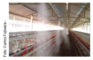 An lise imagens avi rio de postura sistemas climatiza o for Nebulizadores de agua