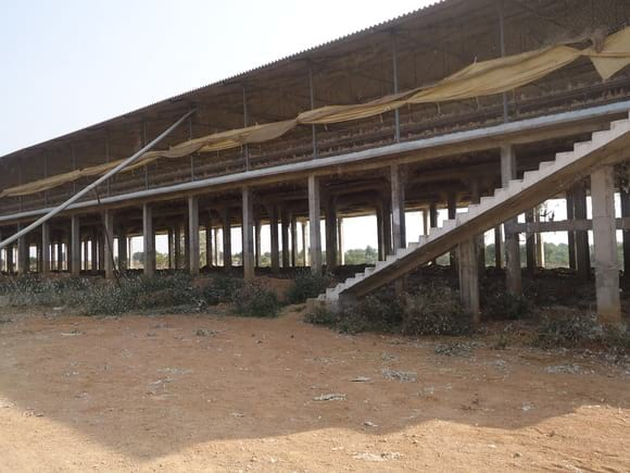Layer Shed 25000 Birds - EC Layer project India