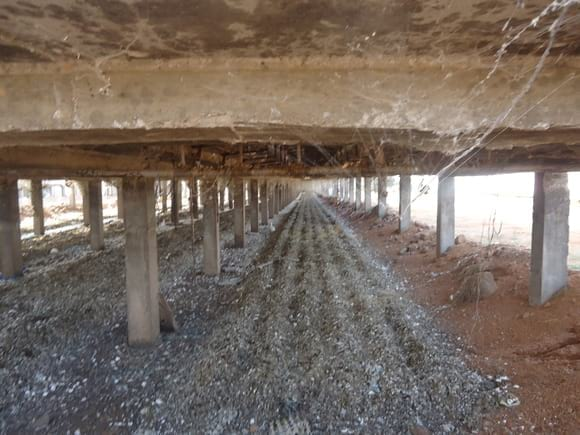 Layer Shed Below - EC Layer project India
