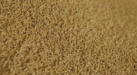 Energy consumption analysis of feed production - Clinical issues