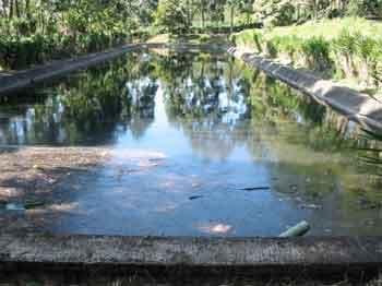 Tratamiento biol gico de aguas residuales aplicable a la for Plastico para lagunas artificiales