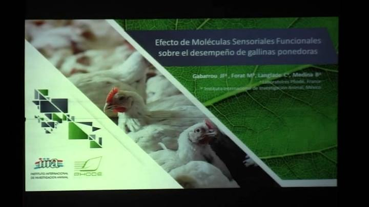 Ponedoras: Efecto de Moleculas sensoriales funcionales