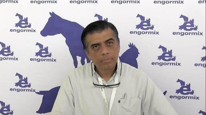 Uso de antibióticos como promotores de crecimiento,Actualización en EEUU y México