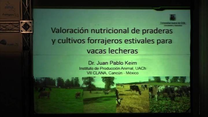 Praderas y cultivos forrajeros estivales para vacas lecheras