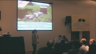 Alfalfa en cerdos, Ganancia de peso y costo de la raci�n. M. A. Gonzalez (INTA)
