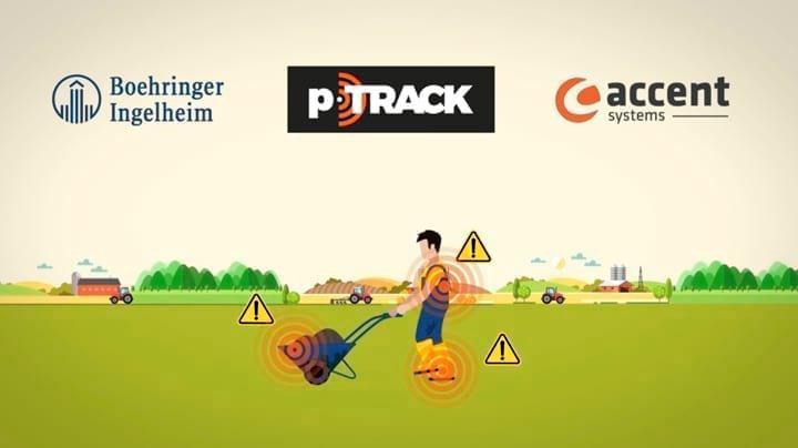 PRRS: Lanzan nueva herramienta de gestión de riesgo intragranja