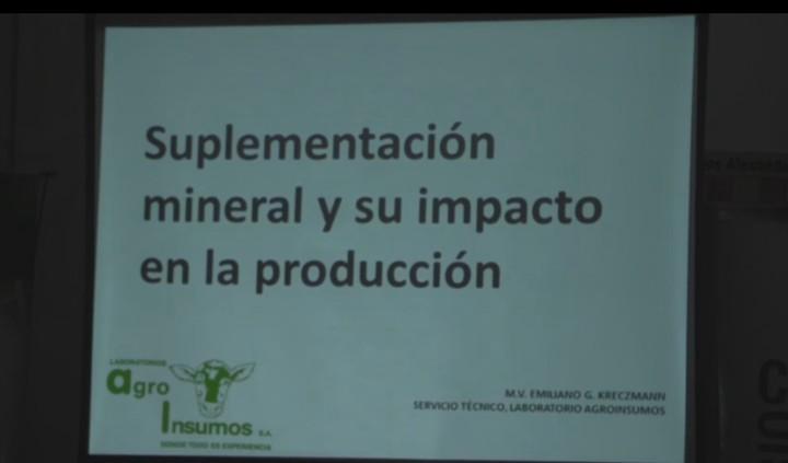 Suplementación mineral y su impacto en la producción bovina
