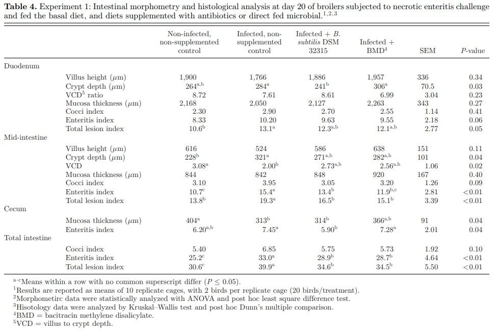 Effect of Bacillus subtilis DSM 32315 on the intestinal