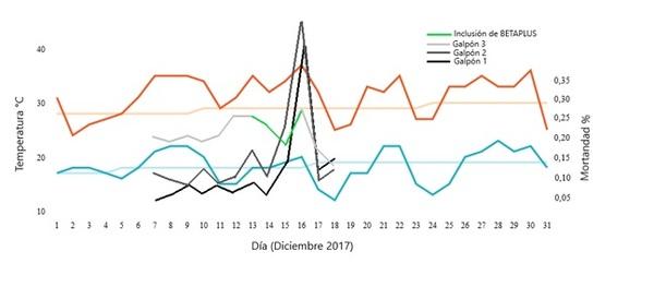 Estrés térmico en aves: utilización de una combinación a base de extractos naturales - Image 2