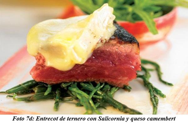 También sirven para hacer cocina gourmet : DIFERENTES TIPOS DE COMIDAS GOURMET CON FORRAJES NATURALES1 - Image 14
