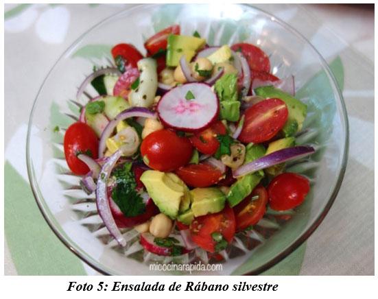 También sirven para hacer cocina gourmet : DIFERENTES TIPOS DE COMIDAS GOURMET CON FORRAJES NATURALES1 - Image 8