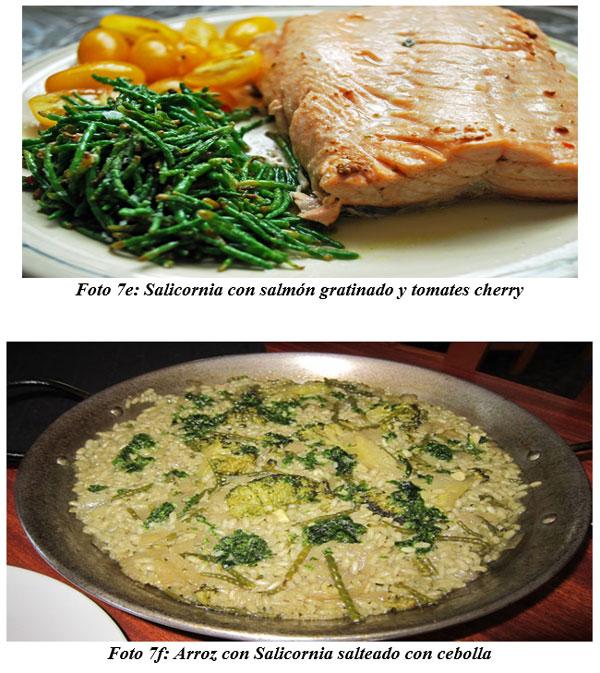 También sirven para hacer cocina gourmet : DIFERENTES TIPOS DE COMIDAS GOURMET CON FORRAJES NATURALES1 - Image 15