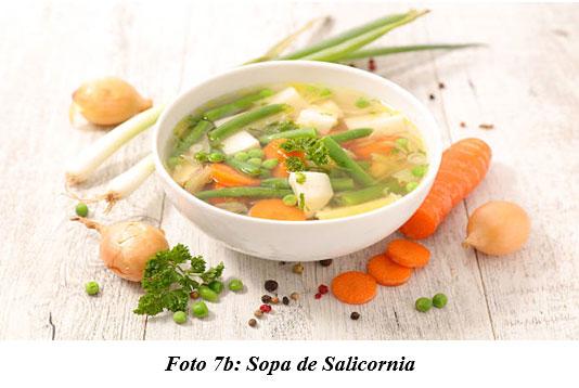 También sirven para hacer cocina gourmet : DIFERENTES TIPOS DE COMIDAS GOURMET CON FORRAJES NATURALES1 - Image 12