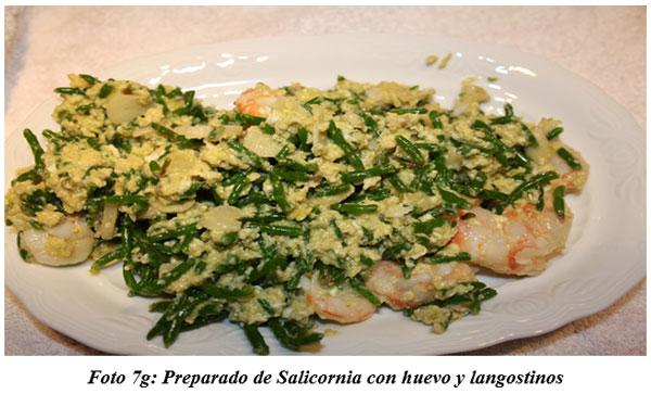 También sirven para hacer cocina gourmet : DIFERENTES TIPOS DE COMIDAS GOURMET CON FORRAJES NATURALES1 - Image 16