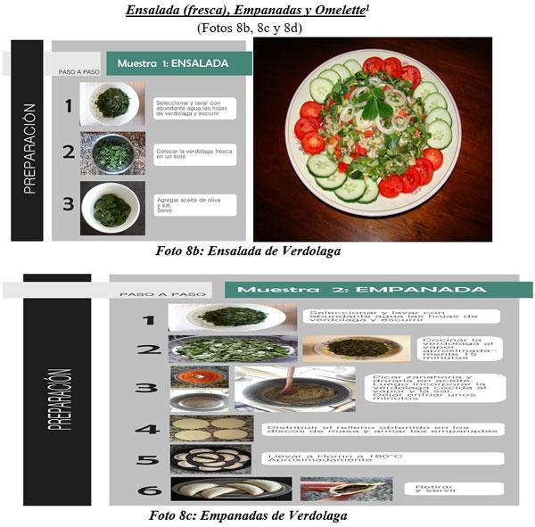 También sirven para hacer cocina gourmet : DIFERENTES TIPOS DE COMIDAS GOURMET CON FORRAJES NATURALES1 - Image 18