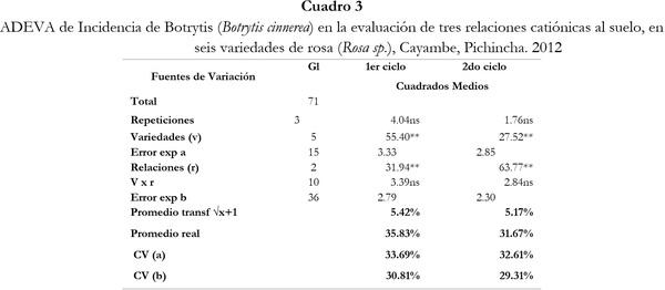 Respuesta de seis cultivares de rosa (Rosa sp.) a tres relaciones catiónicas del suelo. Cayambe, Pichincha - Image 3