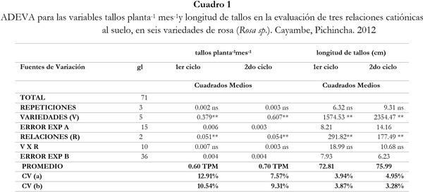 Respuesta de seis cultivares de rosa (Rosa sp.) a tres relaciones catiónicas del suelo. Cayambe, Pichincha - Image 1