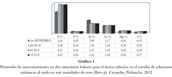 Respuesta de seis cultivares de rosa (Rosa sp.) a tres relaciones catiónicas del suelo. Cayambe, Pichincha - Image 4