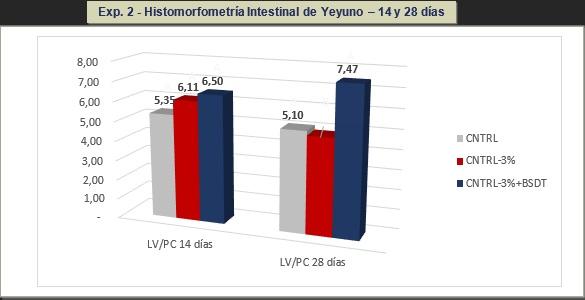 Reducción de costos en dietas de pollos formulando butirato de sodio doblemente tamponado para la mejora de la salud intestinal - Image 2