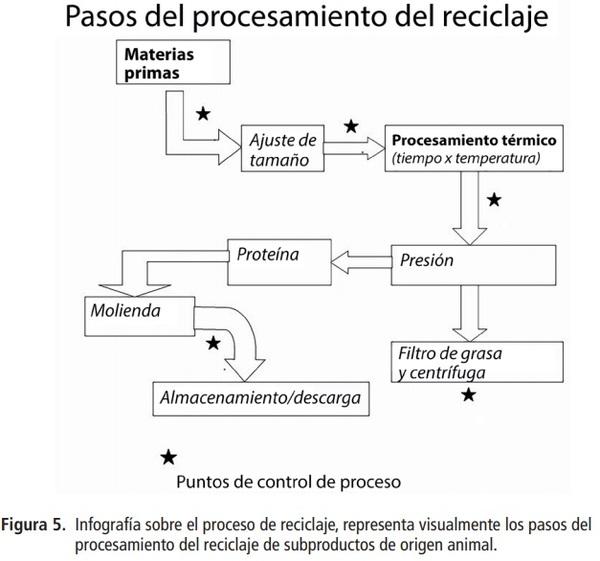Cómo el reciclaje pecuario apoya a la sustentabilidad y promueve la capacidad del ganado de aportar más que alimentos - Image 5