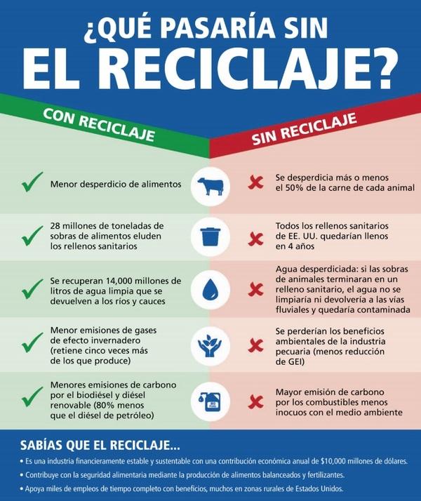 Cómo el reciclaje pecuario apoya a la sustentabilidad y promueve la capacidad del ganado de aportar más que alimentos - Image 9