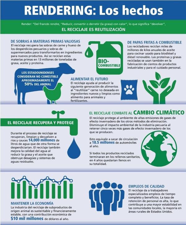 Cómo el reciclaje pecuario apoya a la sustentabilidad y promueve la capacidad del ganado de aportar más que alimentos - Image 6