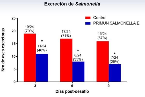 Primun Salmonella E, una nueva propuesta de Calier en la prevención frente a Salmonelosis aviar - Image 3