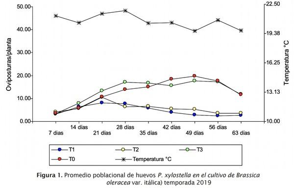 Estrategia de componentes para el manejo integrado de Plutella xylostella L. en brócoli - Image 2
