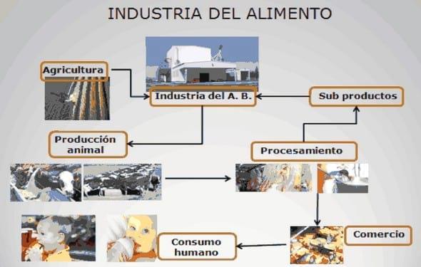 Secado proceso alimentos engormix for Procesos de produccion de alimentos