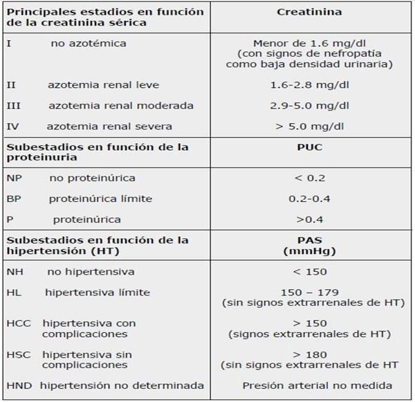 Dieta para insuficiencia renal estadio 4 esperanza de vida