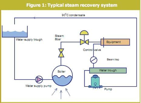 Steam Pipeline System for Feed Manufacturing - Engormix