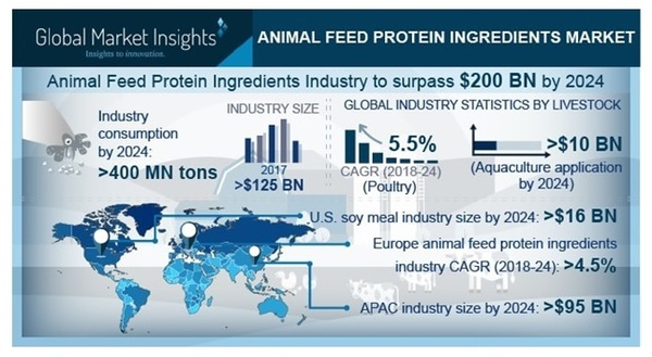 Four things to know about animal feed protein ingredients market
