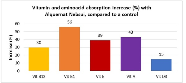 Alquernat Nebsui is a safe bet to improve poultry sector's profitability - Image 2