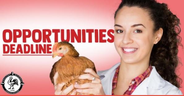 Cobb-Vantress PhD Fellowship Deadline is Next Monday - Image 1