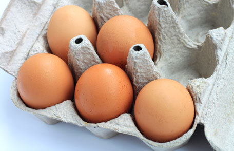 Food safety: Salmonella and Eggs - Image 1