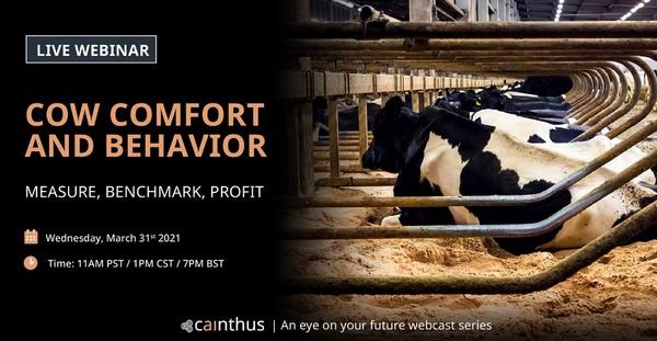 Live webinar: Cow comfort and behavior - Image 1