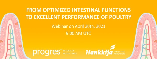 Webinar: From optimized intestinal functions to excellent performance of poultry - Image 1