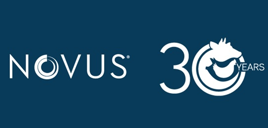Novus celebrates anniversary this month, planning for a long future - Image 1