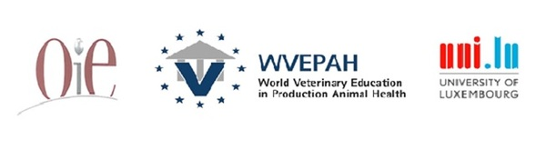 WVEPAH course 'Egg Layers' is available online - Image 1