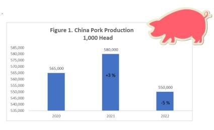 China pork production: 2022 forecast - Image 1