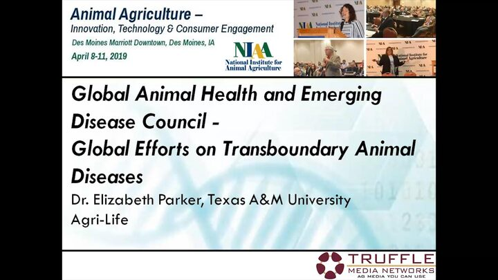 Global Efforts on Transboundary Animal Diseases