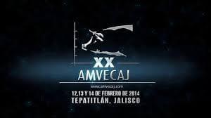 AMVECAJ XX Ciclo de Conferencias 2014