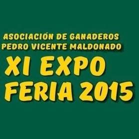 XI Expo Feria 2015
