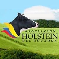 Feria Holstein 2015