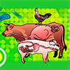 Symposium on Gut Health in Production of Food Animals