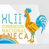 XLII Convención Nacional ANECA