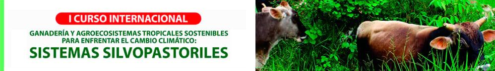 Sistemas Silvopastoriles: Ganadería y Agroecosistemas tropicales sostenibles para enfrentar el cambio climático