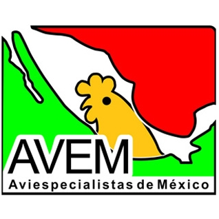 XII Congreso Internacional AVEM 2019